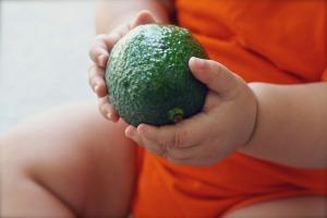 avocado-1476494_960_720