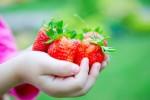 best-garden-for-kids-537x358